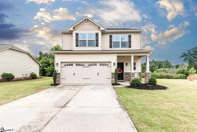 Single Family Home For Sale: 244 Finley Hill