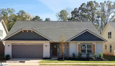 Greenville Single Family Home For Sale: 20 Starlight