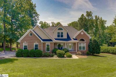 Easley Single Family Home For Sale: 910 McAlister