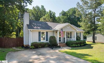 Greenville Single Family Home For Sale: 1039 Summit