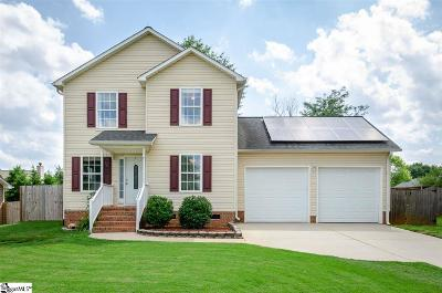 Greenville Single Family Home For Sale: 9 Bluff Point
