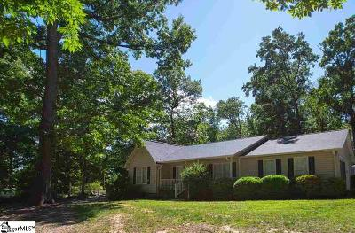 Greer Single Family Home For Sale: 197 Mount Lebanon Church