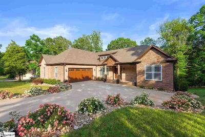 Spartanburg Single Family Home For Sale: 413 Overlook