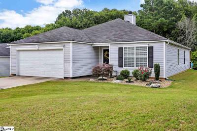 Greenville Single Family Home For Sale: 38 Reedy River