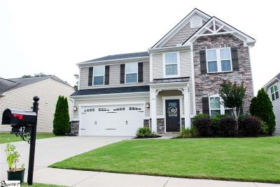 Greenville County Single Family Home For Sale: 47 Chapel Hill