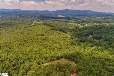 Travelers Rest Residential Lots & Land Contingency Contract: 296 Rabbit