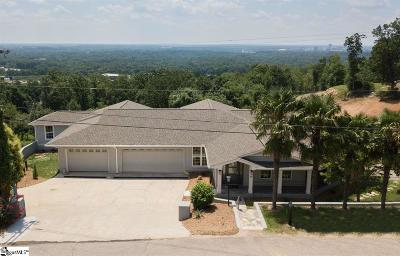Greenville Single Family Home For Sale: 45 View Point