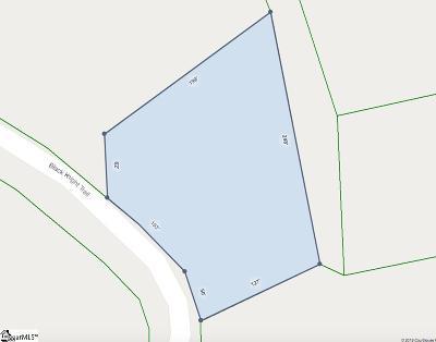 Marietta Residential Lots & Land For Sale: 110 Black Knight