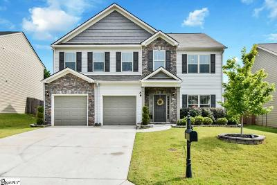 Simpsonville Single Family Home For Sale: 205 Paqcolet