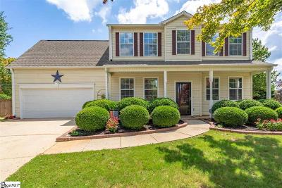 Simpsonville Single Family Home For Sale: 5 Placid Falls