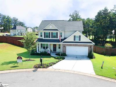 Easley Single Family Home For Sale: 205 Hanster
