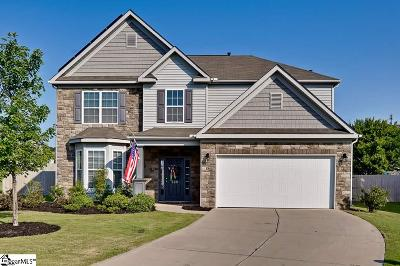 Easley Single Family Home For Sale: 509 Cardiff
