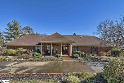 Easley Single Family Home For Sale: 103 Lakeview