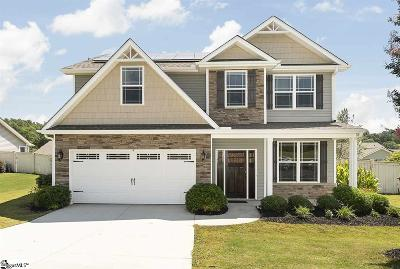 Travelers Rest Single Family Home For Sale: 308 Hawk Valley