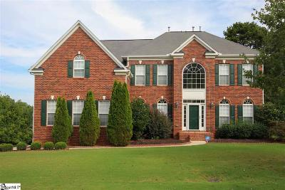Simpsonville Single Family Home For Sale: 206 Winding River