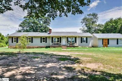 Greenville County Single Family Home For Sale: 121 Holliday
