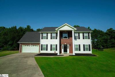Greer Single Family Home For Sale: 30 Summer Valley