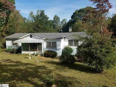 Travelers Rest Single Family Home For Sale: 100 Boyd