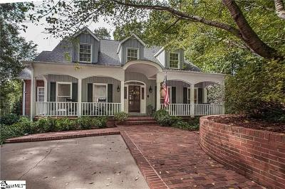Anderson Single Family Home For Sale: 224 Terrace