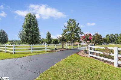 Simpsonville Single Family Home For Sale: 219 Ridge