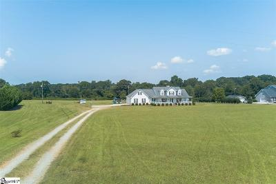Anderson Single Family Home For Sale: 215 Public Well