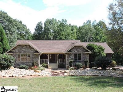 Greenville Single Family Home For Sale: 848 Foothills