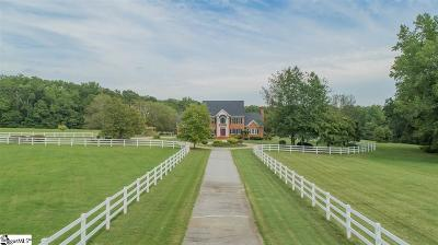 Simpsonville Single Family Home For Sale: 288 Satterfield