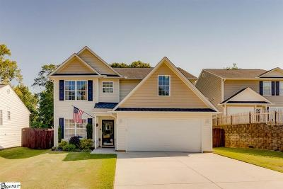 Greer Single Family Home For Sale: 21 Red Shirt