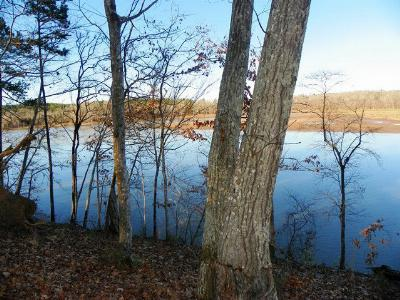 Greenwood County Residential Lots & Land For Sale: 419 Terrapin Pointe Rd