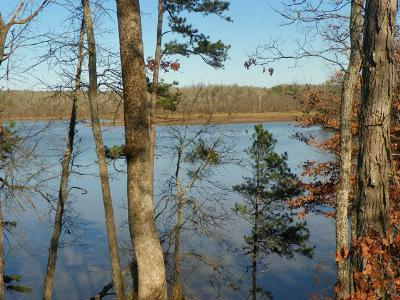 Greenwood County Residential Lots & Land For Sale: 331 Terrapin Pointe Rd