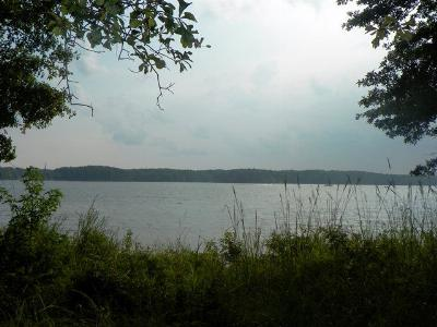 Residential Lots & Land For Sale: -- Summerset Bay Dr
