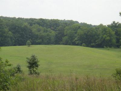 Greenwood County Residential Lots & Land For Sale: Lot E Hammond Rd