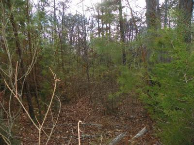 Hodges Residential Lots & Land For Sale: 529 Terrapin Pointe Rd