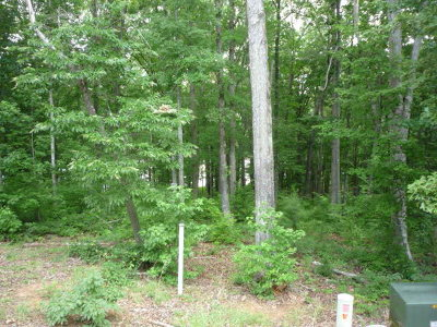 Greenwood County Residential Lots & Land For Sale: Lot 28 Terrapin Pointe