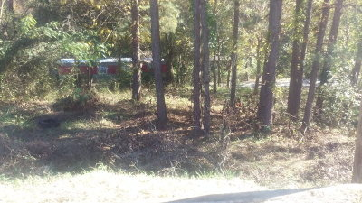 Ware Shoals Residential Lots & Land For Sale: 33 Walnut St