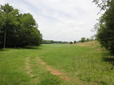 Greenwood County Residential Lots & Land For Sale: Lot D Hammond Rd