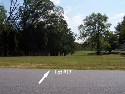Greenwood County Residential Lots & Land For Sale: 114 Verde Ct - Lot 17