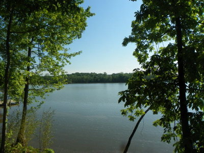 Greenwood County Residential Lots & Land For Sale: 427 Terrapin Pointe Rd