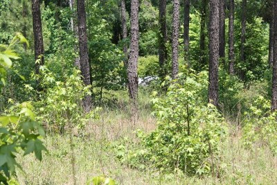 Greenwood County Residential Lots & Land For Sale: 935 Eagles Harbor Dr