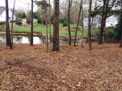 Greenwood County Residential Lots & Land For Sale: Lot 172 Swing About