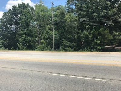 Greenwood County Residential Lots & Land For Sale: 1230 Montague Ave Ext