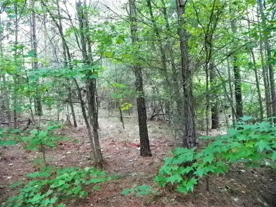 Hodges SC Residential Lots & Land For Sale: $16,900