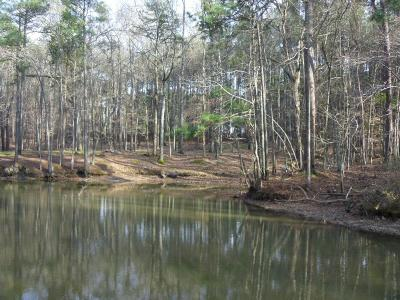 Greenwood County Residential Lots & Land For Sale: 111 Nautical Way