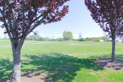 Greenwood County Residential Lots & Land For Sale: 714 Swing About