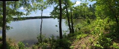 Hodges Residential Lots & Land For Sale: 846 Eagles Harbor