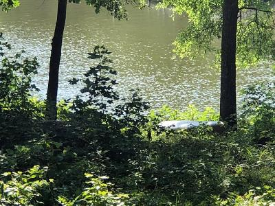 Greenwood County Residential Lots & Land For Sale: 844 Eagles Harbor Dr