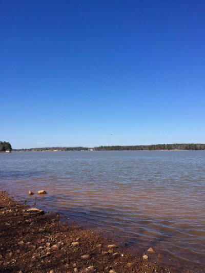 Greenwood County Residential Lots & Land For Sale: 312 Compass Point