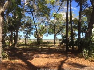 Hilton Head Island Residential Lots & Land For Sale: 17 Indian Hill Lane