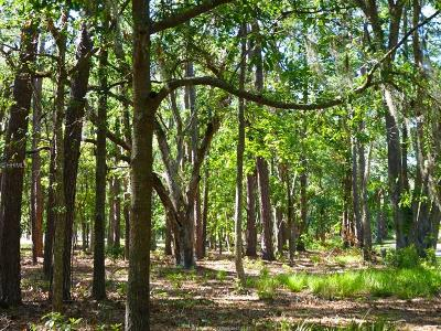 Daufuskie Island SC Residential Lots & Land For Sale: $32,500