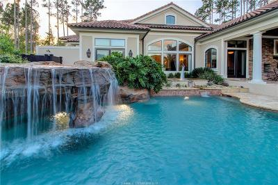 Single Family Home For Sale: 24 Palmetto Cove Court